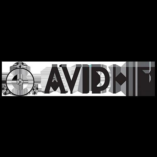 AvidHifi